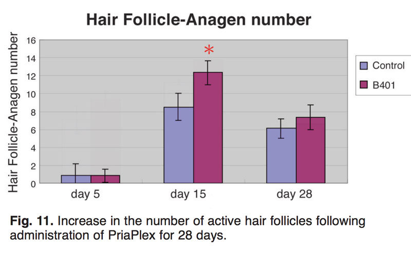 Reversing Age Related Hair Loss And Restoring Healthy Hair