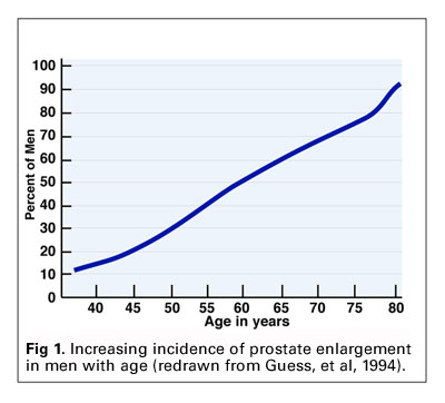 Prostate Enlargement with Age