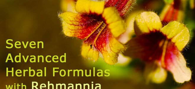 rehmannia_product_guide-2