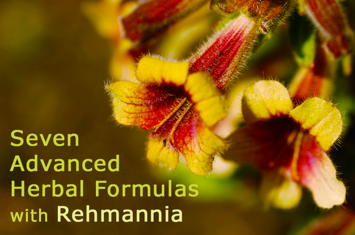 Rehmannia: Superior Longevity Herb Supports Healthy Bones, Joints, Heart and Immune System