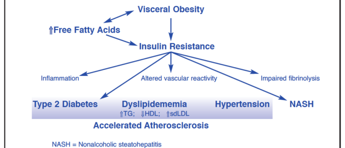 Insulin-Resistance-Metabolic-Syndrome