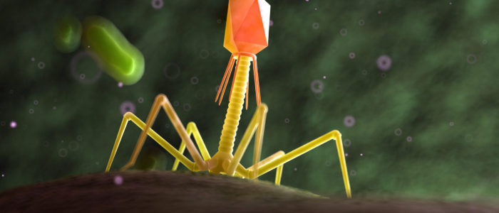 3d,Rendered,Medically,Accurate,Illustration,Of,A,Bacteriophage,On,A