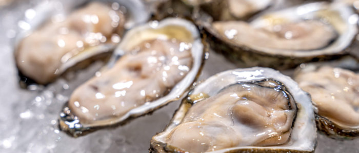 Fresh,Oysters,On,Ice,At,A,Seafood,Restaurant.,Ready,For