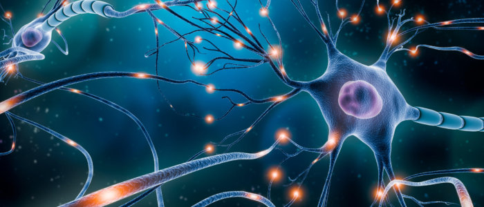 Neuronal,Network,With,Electrical,Activity,Of,Neuron,Cells,3d,Rendering